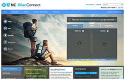 Log in or register on Blue Connect