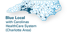 blue local charlotte area network map